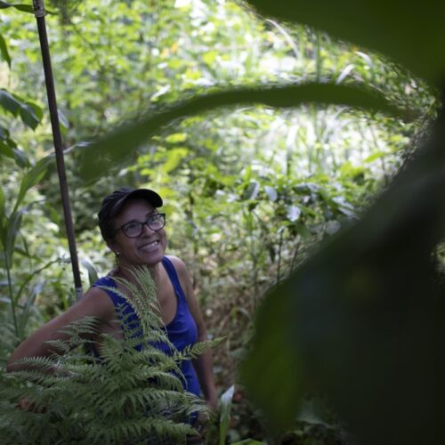 Rio residents try to bring green to a concrete jungle